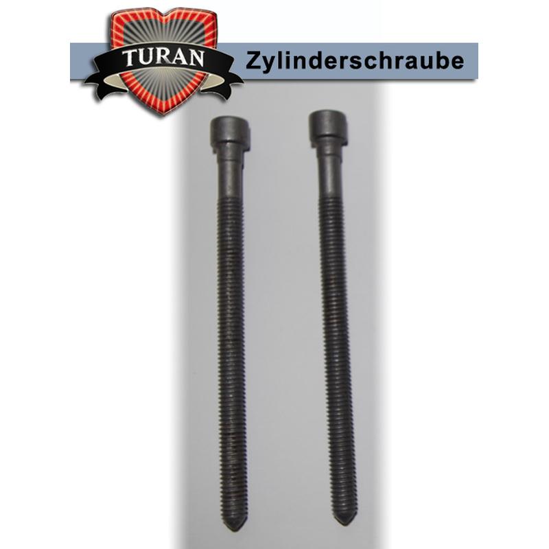 03G103385A Zylinderschrauben für Pumpe-Düse-Einheit Dehnschrauben 2x